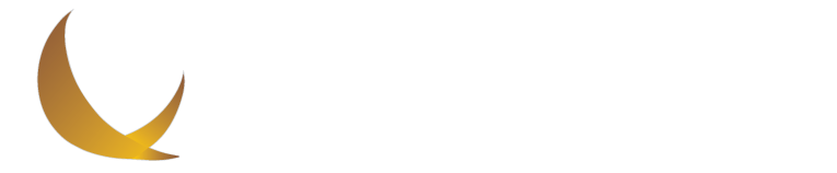 BRANDVIEW CAPITAL PARTNERS